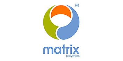 Matrix Polymers